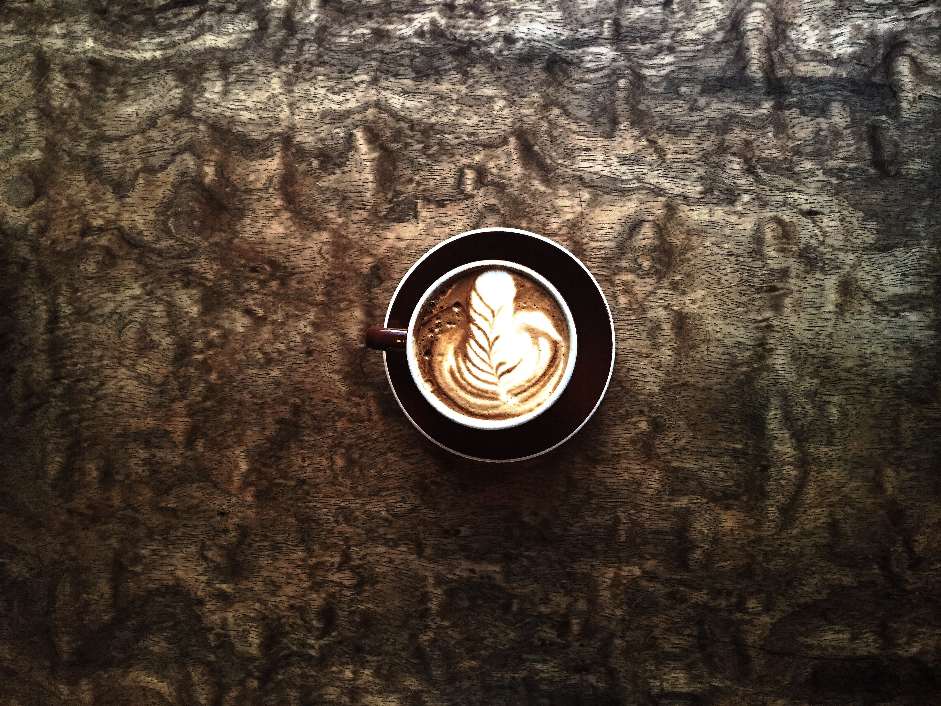 coffeetographer-hungry-ghost-brooklyn-2015-us-coffee-championships