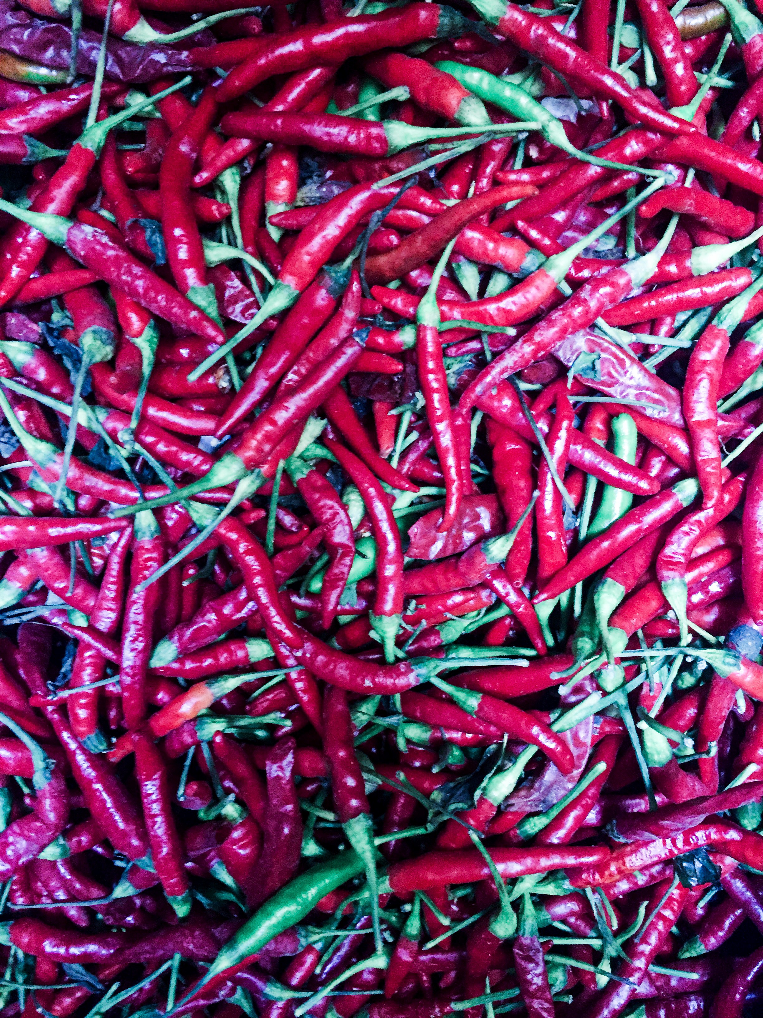 peppers, fez, morocco